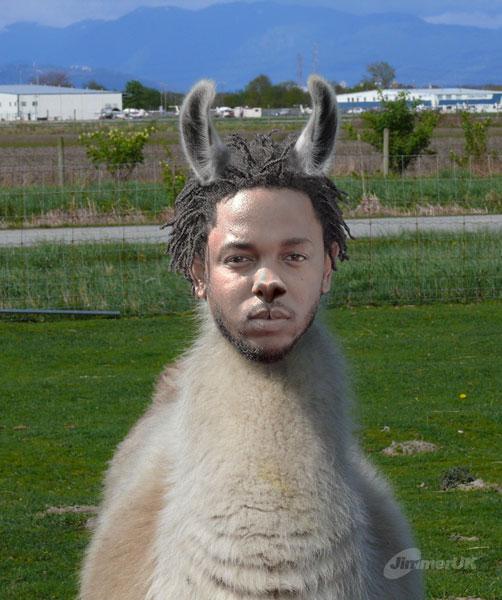 Kendrick Llama